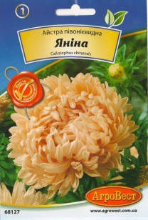 Цветы Астра пионовидная Янина 0,3 г (АгроВест), фото 2