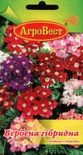 Цветы Вербена гибридная ампельная 0,2 г (АгроВест), фото 2