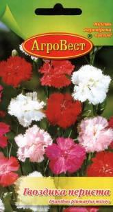 Цветы Гвоздика перистая 0,2 г (АгроВест), фото 2
