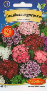 Цветы Гвоздика турецкая 0,3 г (АгроВест)