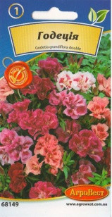 Цветы Годеция 0,3 г (АгроВест)