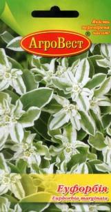Цветы Эуфорбия 0,5 г (АгроВест)