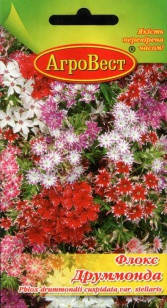 Цветы Флокс Друммонда 0,2 г (АгроВест), фото 2