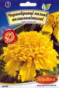 Цветы Бархатцы низкорослые крупноцветковые 0,3 г (АгроВест), фото 2