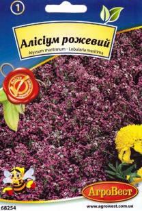 Цветы Алиссиум розовый 0,2 г (АгроВест), фото 2