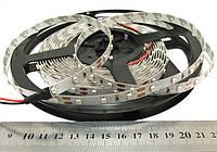"""Світлодіодна стрічка S3528-5000-60-UW """"SL"""" -1м білий-холодний"""