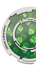 Подробное описание состава и действия БАД DiGuard nano