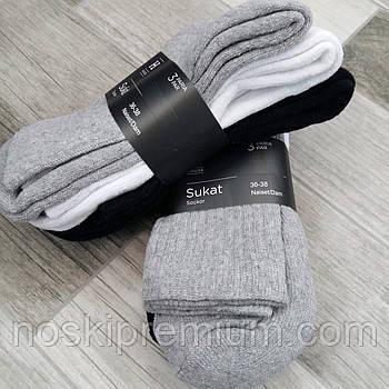 Носки женские х/б махровая стопа House, Финляндия-Турция, размер 36-38, ассорти, 01233