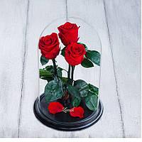 Стабилизированные три розы в колбе Lerosh - Standart 33 см, Красная