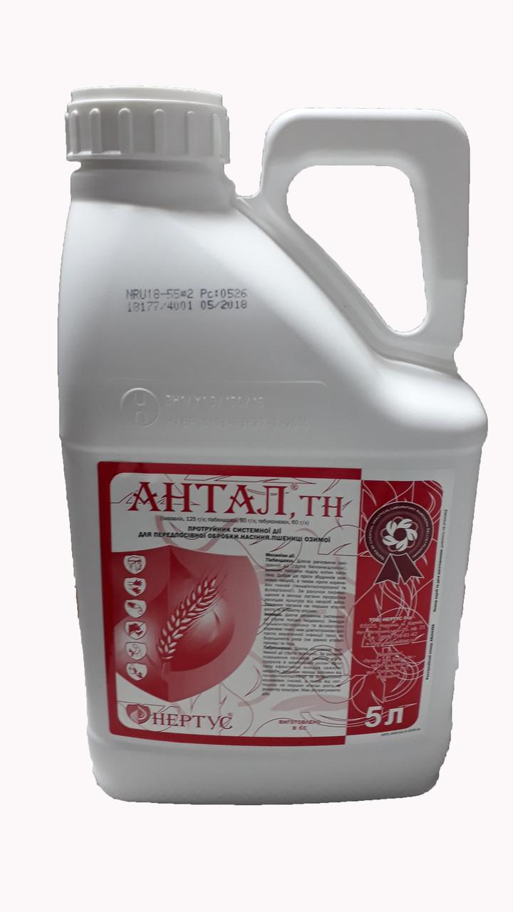 Протравитель семян Антал Нертус - 5 л