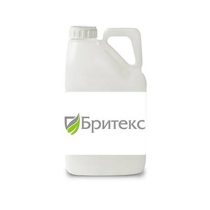 Гербицид Бритекс 40 РК Fader  - 10 л, фото 2
