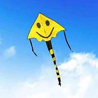 Воздушный змей со смайликом (желтый), фото 1