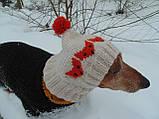 Зимняя шапка для маленькой собаки,шапка для таксы,шапка для собаки до 10 кг, фото 4
