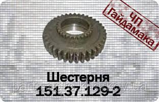 Шестерня заднього ходу КПП Т-150 151.37.129-2