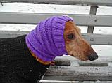 Шапка-снуд для маленькой собаки,шапка для таксы,шапка для собаки до 10 кг, фото 5