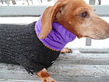 Шапка-снуд для маленькой собаки,шапка для таксы,шапка для собаки до 10 кг, фото 7
