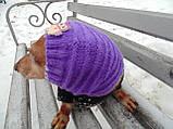 Шапка-снуд для маленькой собаки,шапка для таксы,шапка для собаки до 10 кг, фото 4