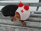 Шапка-снуд для маленькой собаки,шапка для таксы,шапка для собаки до 10 кг, фото 3
