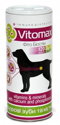 Витамины для зубов и костей собак с кальцием и фосфором Vitomax 1000 таблеток, фото 2