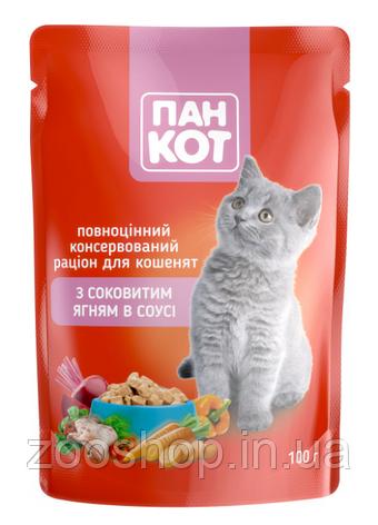 Паучи для кошек Пан Кот Ягненок в соусе 100 г, фото 2
