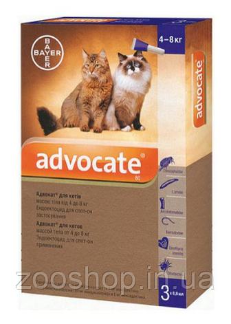 Капли Bayer Advocate от заражений эндо и экто паразитами для котов 4-8 кг 3 пипетки, фото 2