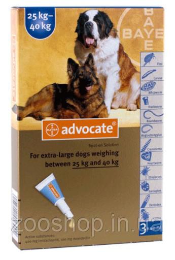 Капли Bayer Advocate от заражений эндо и экто паразитами для собак свыше 25 кг