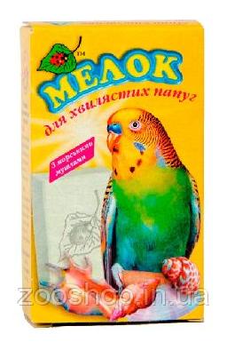 Мелок с морскими ракушками для волнистых попугаев