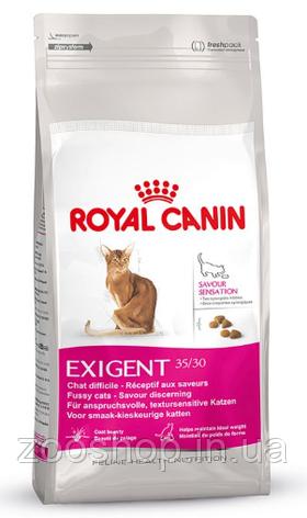 Сухой корм Royal Canin Exigent Savour для привередливых котов от 1 года 10 кг, фото 2