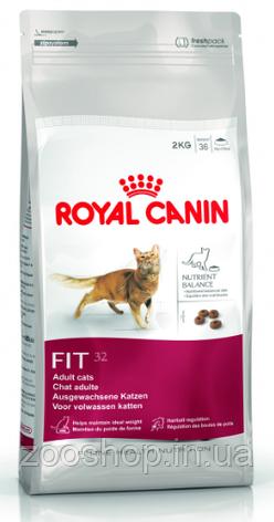 Сухой корм Royal Canin Fit 32 для взрослых котов от 1 года 10 кг, фото 2