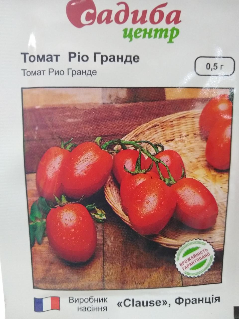 Насіння середньостиглого Томат детермінантний сорт сливка Ріо Гранде 0,5 грам Clause, Франція