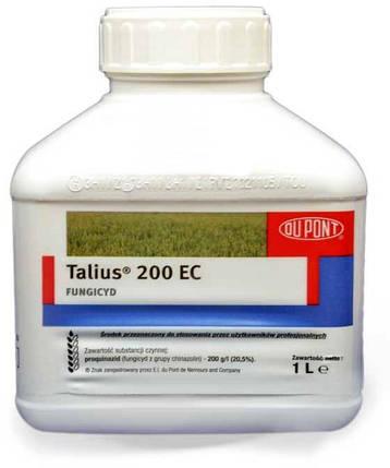 Фунгицид Талиус 20 % к.е. (DuPont) - 1 л, фото 2