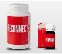 Реконнект (Reconnect): Восстановитель связей