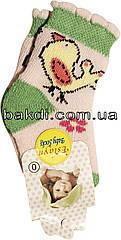Дитячі теплі шкарпетки розмір 0 0-6 міс махра рожевий на дівчинку для новонароджених ТН-146С