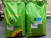 Семена подсолнечника Фабиола КС/Fabiola CS, высокая масличность, устойчивость к ложной мучнистой росе