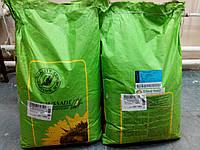 Подсолнечник ВЕЛКОМ / Welcom 106-112 дней, 39,5 ц / га, заразиха A-F, 50% масла