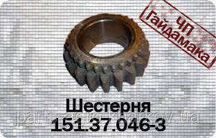 151.37.046-3 Шестерня робочого ряду z=19 КПП Т-150