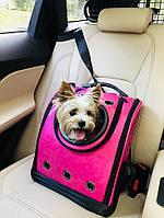 Рюкзак для котов и небольших собак CosmoPet. Переноска для домашних животных. Авиапереноска, фото 1