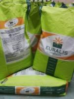 Семена подсолнечника Терра  (устойчивость к заразихе A-Е) 102-105Euralis Semences