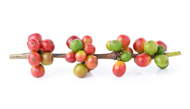некислые сорта кофе, какие сорта кофе без кислинки
