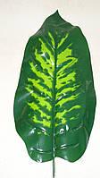Лист дифенбахии большой латексный зеленый
