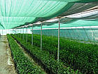 Затеняющая сетка 2м 85% на метраж, фото 2