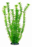 Аквариумное растение Aquatic Plants №345, 34 см.
