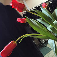 Новое обновление ассортимента - весенняя коллекция 2015 -  10 марта - вторник