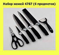 Набор ножей 4787 (6 предметов)