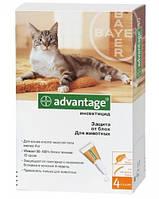 Капли Bayer Advantage 40 от блох, пипетка 0,4мл