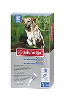 Капли Bayer Advantix от блох и клещей для собак весом от 25 кг, пипетка 4мл