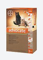 Капли Bayer Advocate Адвокат инсектицидные для кошек весом до 4 кг, 1х0,4мл