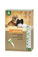 Капли Advocate от глистов, блох, клещей для собак весом до 4 кг, 0,4мл