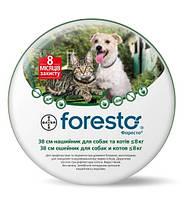 Нашийник Bayer Foresto від кліщів і бліх для собак і кішок до 8кг, 38 см