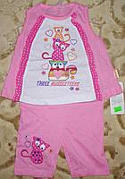 """Костюмчик футболка+шорты""""котики"""" 6-12 мес. розовый"""